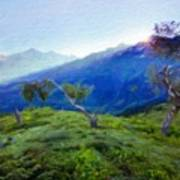 Nature Landscape Oil Painting On Canvas Poster
