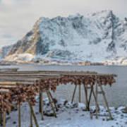 Reine, Lofoten - Norway Poster