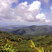 The El Yunque National Forest, Puerto Rico Poster