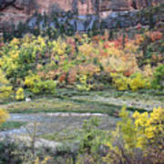Zion National Park In Autumn Poster