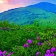 Nature Landscape Illumination Poster