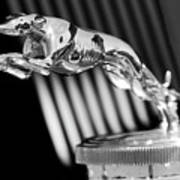1930 Lincoln Berline Hood Ornament Poster