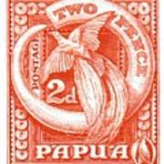 1932 Papua New Guinea Bird Of Paradise Postage Stamp Poster