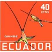 1958 Ecuador Hummingbirds Postage Stamp Poster