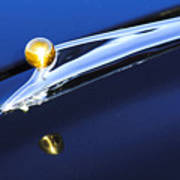 1962 Ford Galaxie Hood Ornament Poster