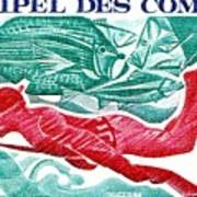 1972 Comoro Islands Spearfishing Postage Stamp Poster