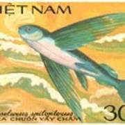 1984 Vietnam Flying Fish Postage Stamp Poster