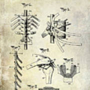 1911 Anatomical Skeleton Patent Poster