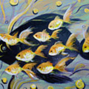 8 Gold Fish Poster