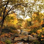 Autumn Garden Poster