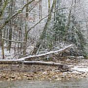 Autumn Snow Williams River  Poster