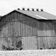 Barn In Kentucky No 71 Poster