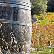 Barrel In The Vineyard Poster