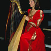 Beautiful Harp Player Poster
