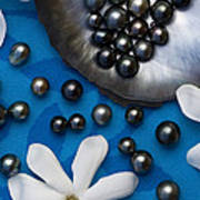 Black Pearls And Tiare Flowers Poster
