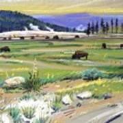 Buffaloes In Yellowstone Poster