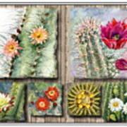 Cactus Collage Poster