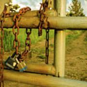 Padlocks And Chains Poster