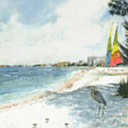 Blue Heron And Hobie Cats, Crescent Beach, Siesta Key Poster