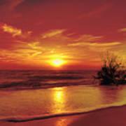 Evening Beach Poster