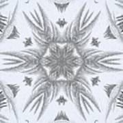 Fern Frost Mandala Poster