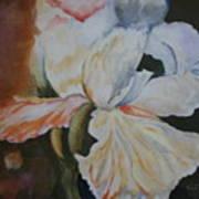 Fleur-de-lis Poster