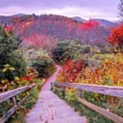 Graveyard Fields Overlook In The Smoky Mountains In North Caroli Poster