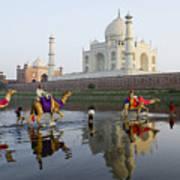 India's Taj Mahal Poster