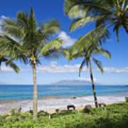 Makena, Maluaka Beach Poster