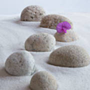 Meditation Stones Pink Flowers On White Sand Poster