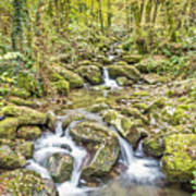 Mountain Stream In Autumn Poster