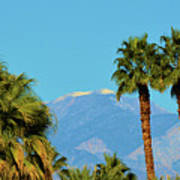 Palm Springs Mountains Poster