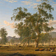 Patterdale Landscape With Cattle Poster