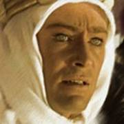 Peter O'toole As Lawrence Of Arabia Poster