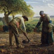 Potato Planters Poster