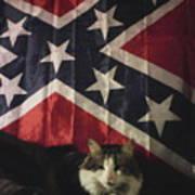 Rebel Cat Poster