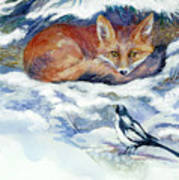 Red Fox With Magpie Poster