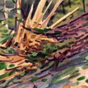 Shattered Pine Poster
