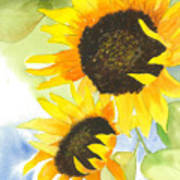 2 Sunflowers Poster