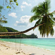 Tropical Beach At Mahe Island Seychelles Poster