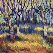 Van Gogh's Orchard Poster