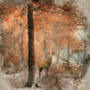 Watercolour Painting Of Beautiful Image Of Red Deer Stag In Fogg Poster