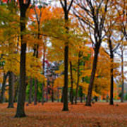 2015 Fall Colors - Washington Crossing State Park-1 Poster