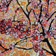 201727 Cherry Blossoms Poster