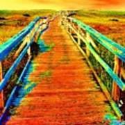 2355z  Wooden  Walkway Poster