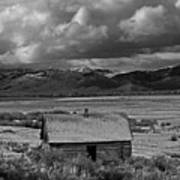 2d07515-bw Abandoned Cabin Poster