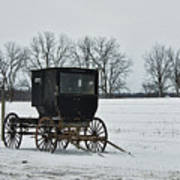 Amish Buggy Near Shipshe Poster