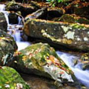 Autumn Mountain Stream Poster