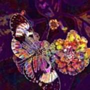 Butterfly Macro Pose Plant Green  Poster