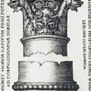 Capital And Base Of A Column Poster